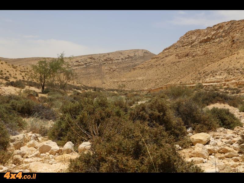 מסלול הלוך חזור בתוך נחל רביבים למרגלות הר קשקשים